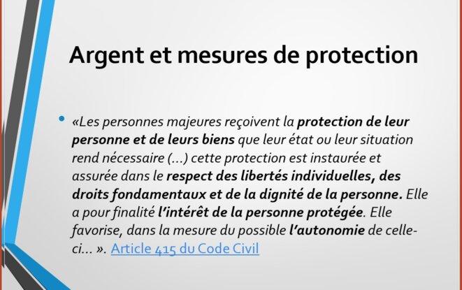 Article 415 du Code Civil © Capture d'écran. Intervention F. Meziane