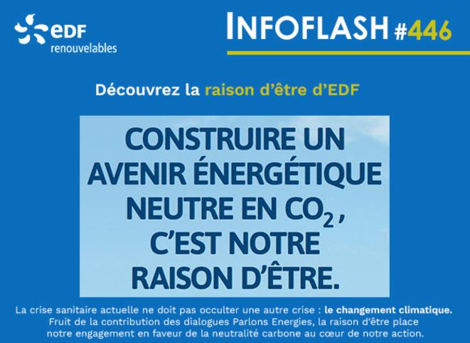 Extrait de la « raison d'être » d'EDF en juin 2020. © DR
