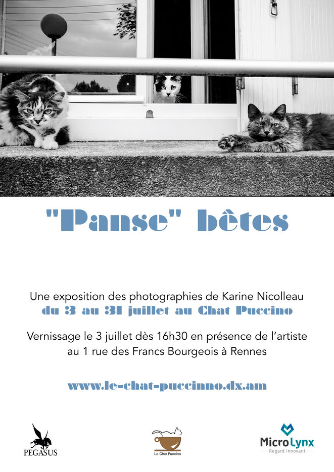 expo-panse-be-tes