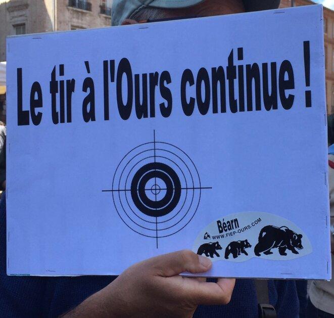 Le tir à l'Ours continue ! © AB
