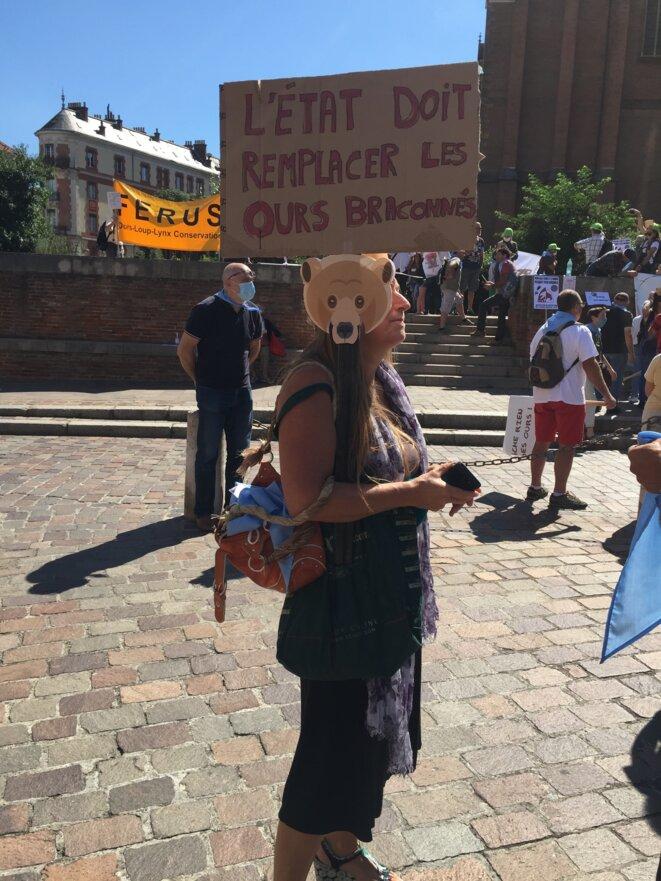 L'État doit remplacer les ours braconnés © AB