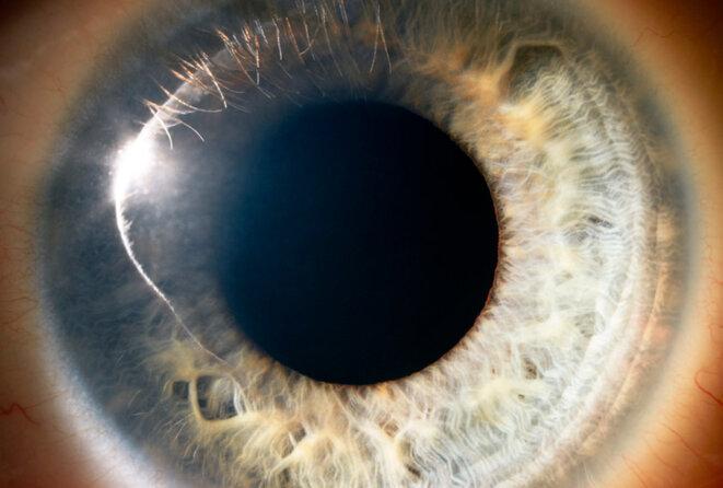 Vue macro de l'œil humain © Peter Finch / Getty Images