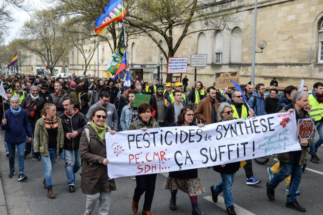 Manifestation à Bordeaux contre les pesticides, le 14 mars 2020. © MEHDI FEDOUACH / AFP