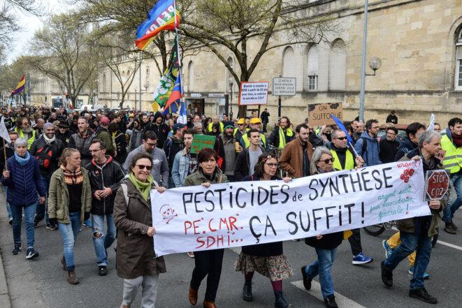 Manifestation à Bordeaux contre les pesticides, le 14 mars 2020. © MEHDI FEDOUACH / AFP