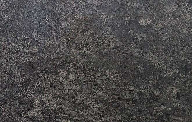 Transhumance, Cape II (2015) eau-forte - 120 x 90 cm. Détail. © Muriel Moreau