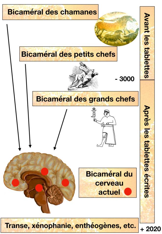 Bicaméral de la préhistoire à aujourd'hui © Christian Bois Arias-Carrión et coll
