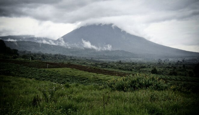 Parc national des Virung au Nord-Kivu © Unesco