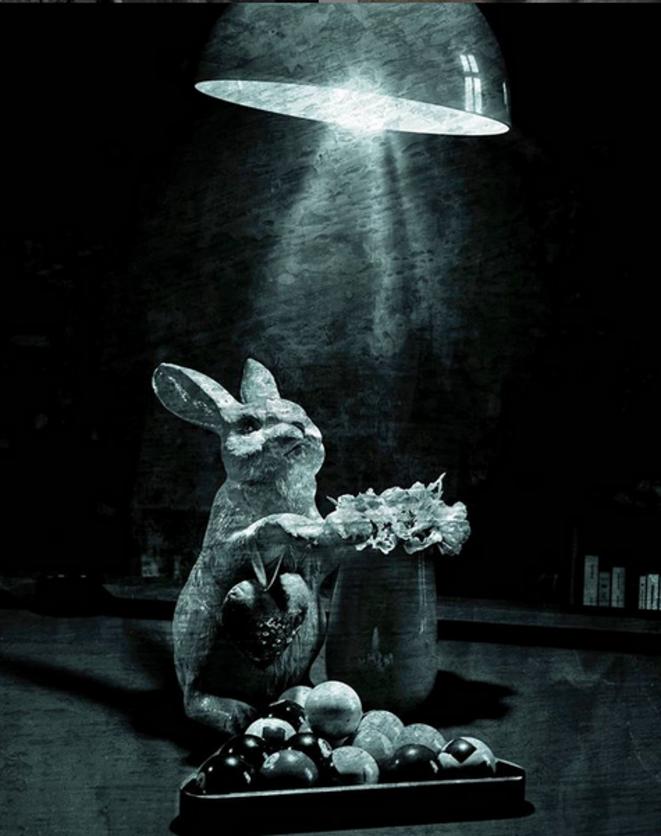 Bunny B © Luna TMG Instagram