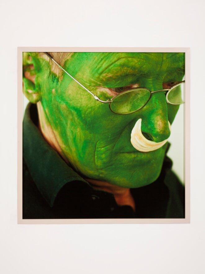 Lois Weinberger, Green Man, 2004, collection Frac Nouvelle-Aquitaine MÉCA. © Lois Weinberger, photo J. C. Garcia