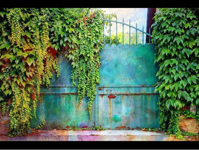 Colored Gates © Luna TMG Instagram