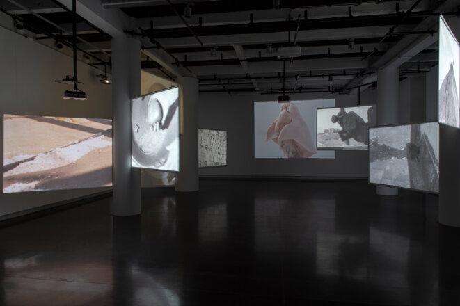 """Vue de l'exposition """"La Bête, un conte moderne"""" de Yasmina Benabderrahmane, LE BAL, 2020 © Marc Domage"""