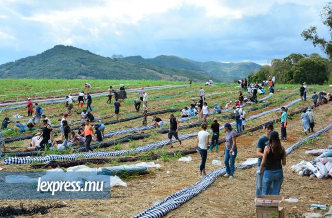 Fabrication de barrages pour bloquer les hydrocarbures (photo : lexpress.mu)