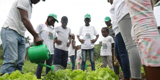 Gabon | Jeunesse et retour à la terre.