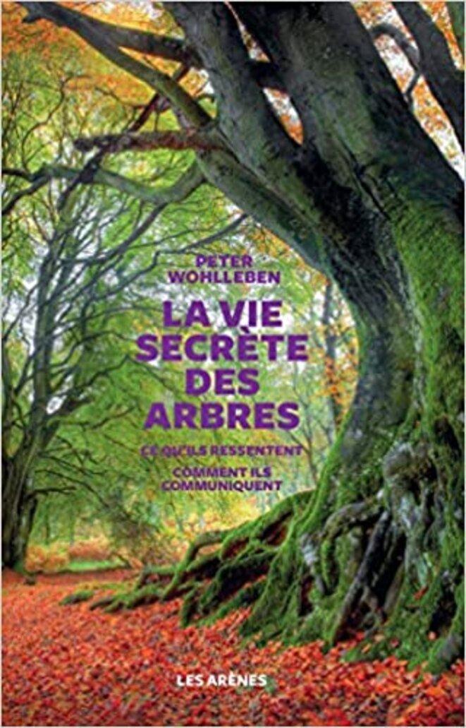 La vie secrète des arbres © Peter Wohlleben