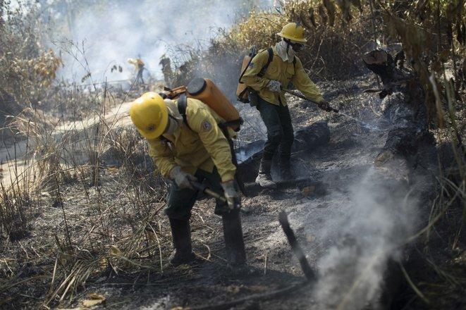 Bomberos del Ibama combaten un incendio el 15 de agosto de 2020 en Novo Progresso, en el Estado de Pará. © Fernando Souza/AGIF/AFP