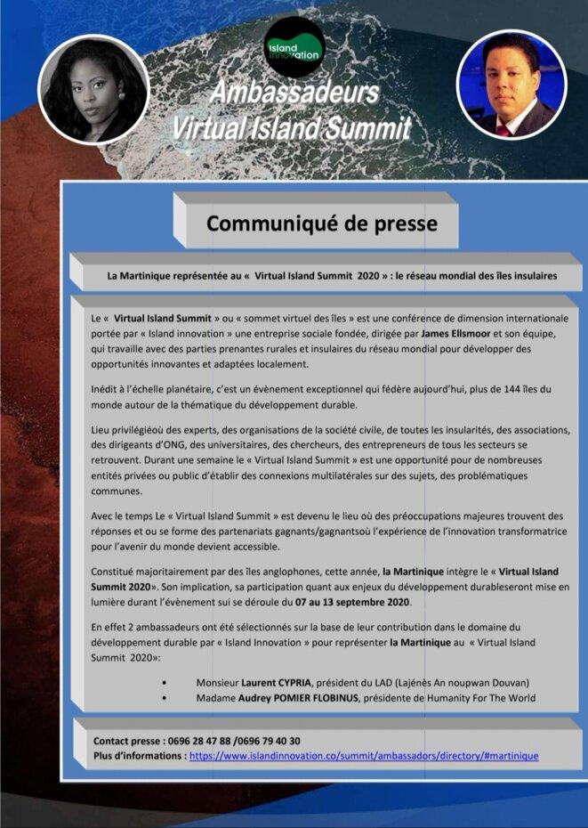 Ambassadeurs Island Innovation Martinique - Virtual Island Summit 2020 © Audrey POMIER FLOBINUS