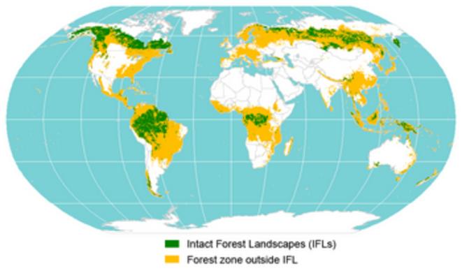 Carte mondiale des paysages forestiers intacts et des zones forestières dégradées