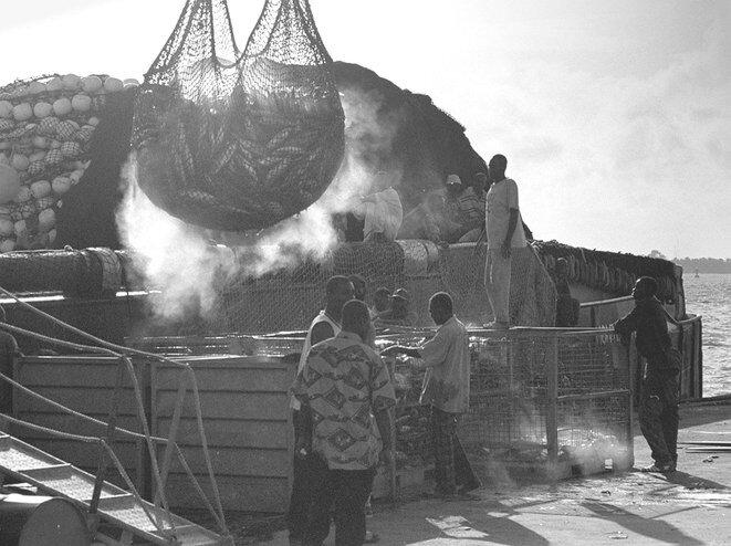 Pescadores marfileños descargan un arrastrero con 500 toneladas de atún, el 18 de octubre de 1999, en el puerto autónomo de Abidján. © Jean-Philippe Ksiazek/AFP