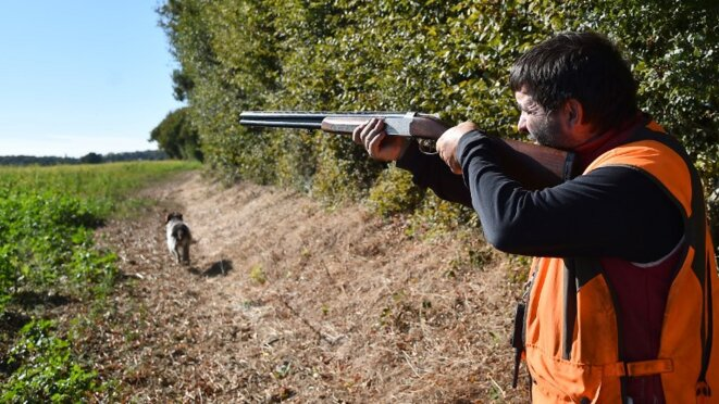 French hunters scatter several thousands of tonnes of lead from spent ammunition every year, exposing groundwater and the fauna to contamination. © AFP