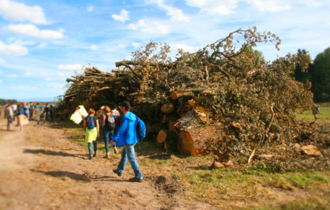 Le GCO s'est plus de 30 hectares de forêts massacrées à Kolbsheim et Vendenheim © GCO NON MERCI