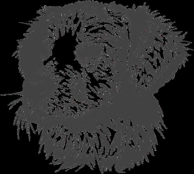 Un chien © Image par Gorkhs de Pixabay