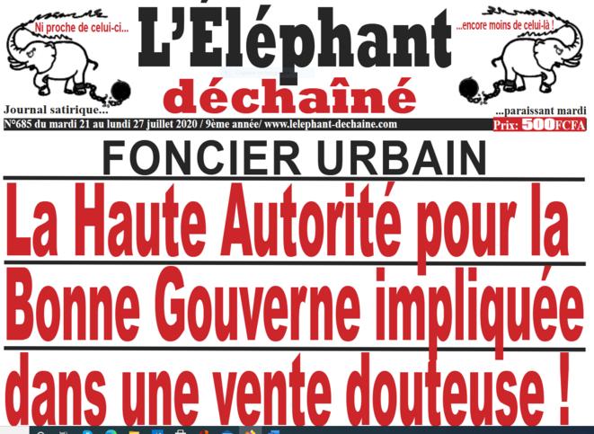 lelephant-dechaine-affaire-raoufi-1