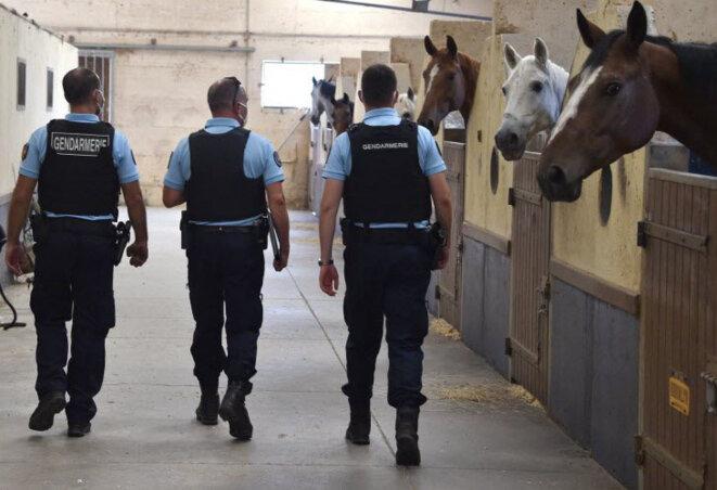 Inspection de la gendarmerie chez un propriétaire de chevaux dans le cadre des enquêtes sur les mutilations © Philippe Vacher / Progrès