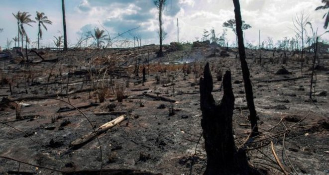 A burned-out, deforested area of the Amazon rainforest near Novo Progresso, Para state, Brazil, August 25th 2019. © Joao Laet/AFP