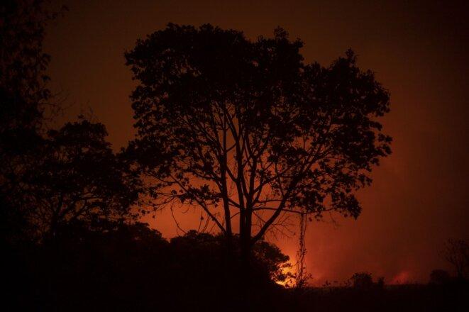 Dans le Pantanal, le 12 septembre 2020. © Mauro PIMENTEL / AFP
