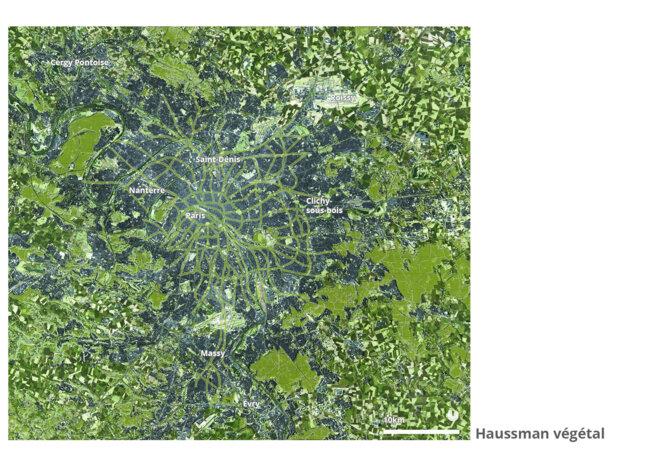Haussmann végétal - Grand Paris © fair