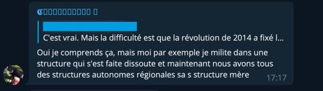 Réponse de « Charlemagne » dans le tchat d'extrême droite sur l'application Telegram, le 18 avril 2020. © Document Mediapart