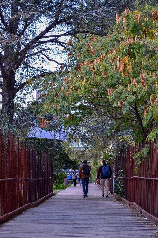 Des étudiants sortants de cours à la faculté Paul-Valéry, Montpellier, le 12/10/2020. © Samuel Clauzier