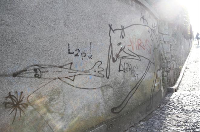 Réduire la société à un groupe d'êtres humains n'est pas tenable, tant d'autres types de vies influencent les nôtres. Cet enchevêtrement, présent dans nos représentations, ne peut rester sans traduction politique. (Graffiti à Zurich, 2016).