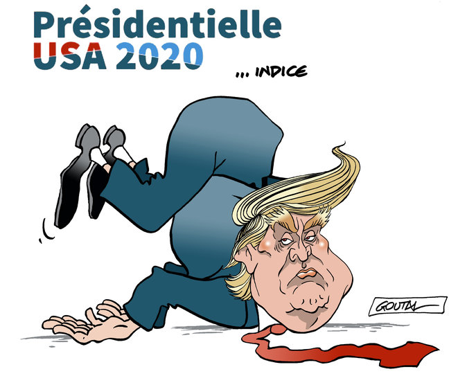 1-aaaterre-donald