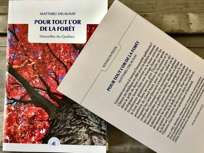 Couverture du livre de Matthieu Delaunay