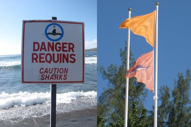 Panneau et drapeau sur une plage de la Réunion © Damien Gautreau