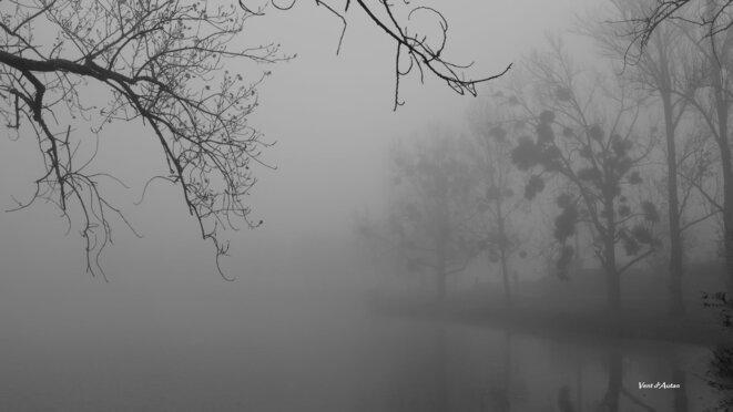 Sous la brume © Vent d'Autan