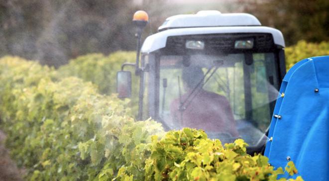 Traitement de vignes au pulvérisateur. © Philippe Roy / Aurimages via AFP
