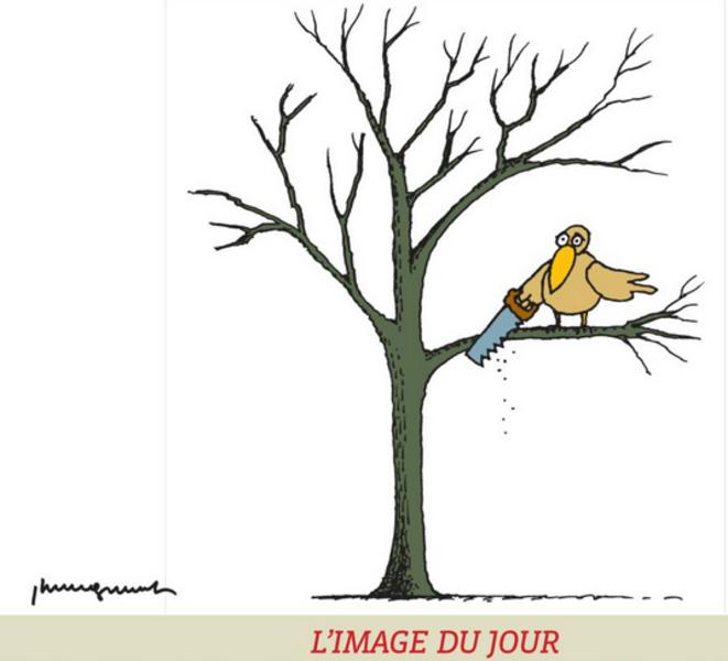 image-2020-12-17-121127