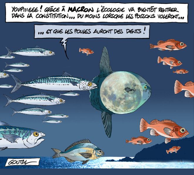 1-aaa-a-constitution-ecologie-ds