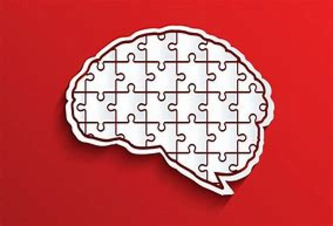 cortex-puzzle
