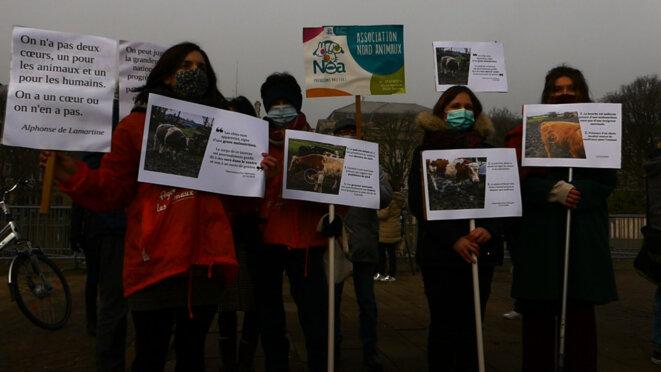 Manifestants arborant leur pancarte. Par Pauline Defélix