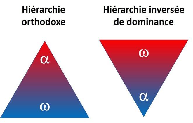 reverse-hierarchy