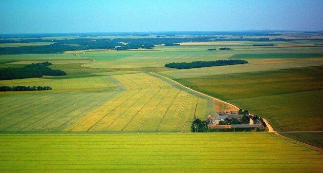 L'américanisation des paysages agricoles en France : une catastrophe écologique © DR