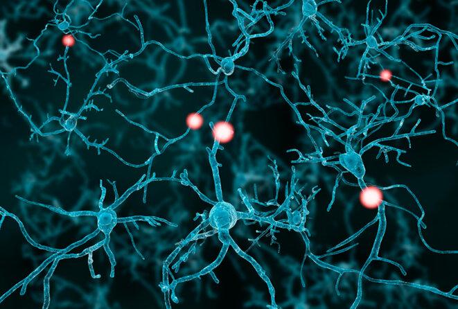 Illustration de la mise à feu de neurones © Juan Gartner / Getty Images