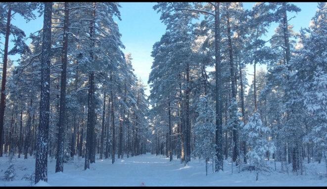 Les 2 sous d'Anis dans le WALOU dela Suède : GOD MORGON SWEDEN