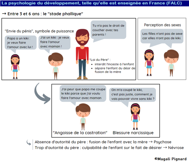 La psychologie du développement telle qu'elle est enseignée en France en FALC © Magali Pignard