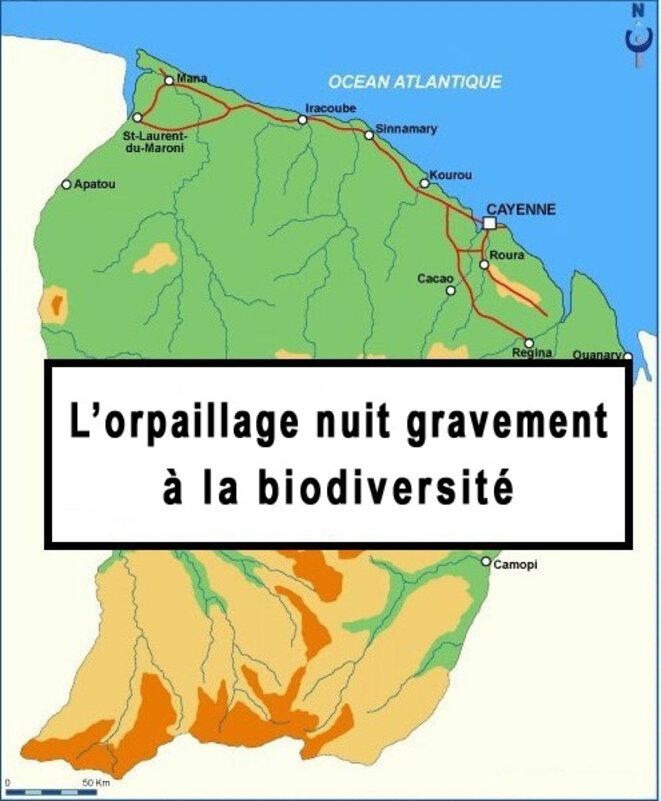 orpaillage Guyane