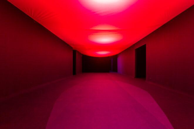 Vue de l'exposition « Gut Feelings. Tellement vitales et si vivantes », Louise Siffert, BBB centre d'art, 2020. Commissaire : Marie Bechetoille. © Photo : Fanny Trichet.