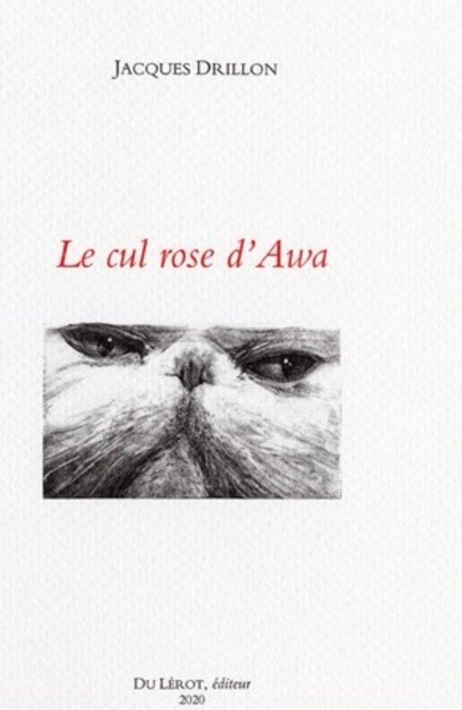 cul-rose-dawa